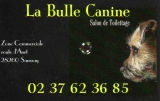 Salon de toilettage La Bulle Canine